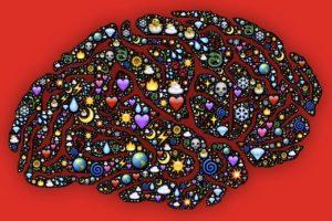 Социоген: что он нам несёт?, psychologies.today, мозг