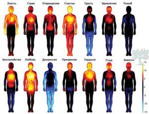 11emotion-heatmap-body-atlas-1