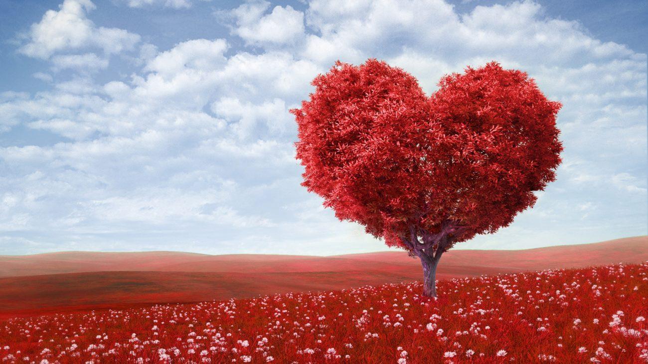 любовь отношения отношения со стажем размышления саморазвитие Светлана Нимак, Спешите любить, Новости Саморазвитие и личностный рост Статьи, psychologies.today
