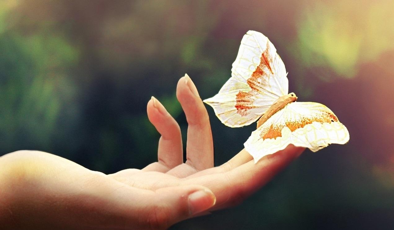зависимость Ирина Дученко размышления семейная психология сепарация созависимость, Принятие ответственности методом отделения, Новости Саморазвитие и личностный рост Семейная психология Статьи, psychologies.today