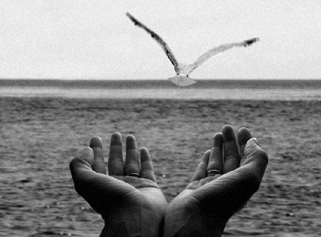 благодарение гармон Дарья Коноплева измена любовь обида отношения прощение расставание саморазвитие эмоции, Нити или цепи? Как правильно освобождаться от старых отношений. Практики Благодарения и Прощения, Методики и самопомощь Новости Статьи, psychologies.today