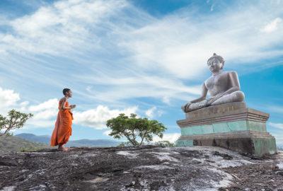 буддизм инстинкты интересно знать саморазвитие Юлия Шендер, Почему проще быть обезьянкой или Буддизм как бунт против природы, Интересно знать!, psychologies.today