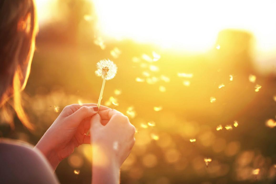 Барбара Ли Фредриксон благоговение благодарность вдохновение веселье гордость интерес любовь надежда нейтральные эмоции позитивная психология позитивные эмоции психологія емоцій радость спокойствие счастье эмоции Юлия Шендер, 10 положительных эмоций и их значение, psychologies.today